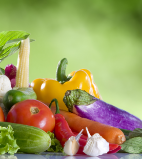 Diploma of nutrition