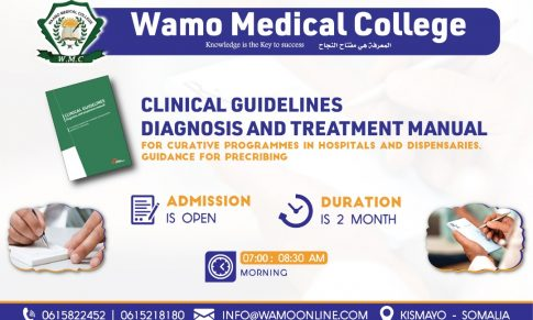 Clinical Guidelines Diagnosis and Treatment Manual